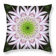 Kaleidoscope Pink Daisy Throw Pillow