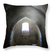 Kalmar Slottet Throw Pillow
