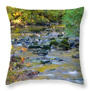 Kanaka Creek In The Fall Throw Pillow