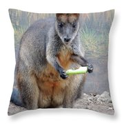 kangaroo Snack Throw Pillow