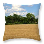 Kansas Wheat Field 3a Throw Pillow