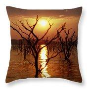 Kariba Sunset Throw Pillow