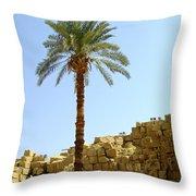 Karnak Temple 12 Throw Pillow