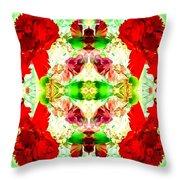 Karnation Kaleidoscope Throw Pillow