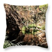 Kathleen Springs Throw Pillow