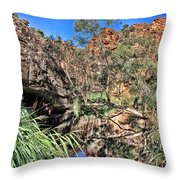 Kathleen Springs V3 Throw Pillow