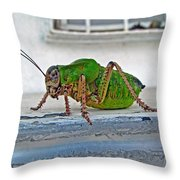 Katydid Throw Pillow