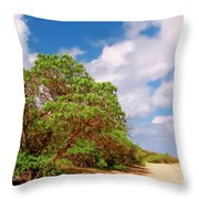 Kauai Beach Throw Pillow