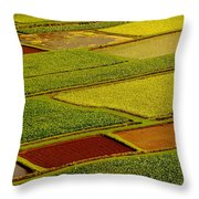 Kauai Taro Fields Throw Pillow