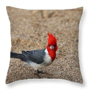 Kauaii Friend Throw Pillow