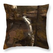 Kauterskill Falls Throw Pillow