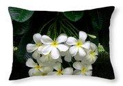 Kawela Plumeria Throw Pillow