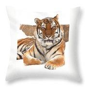 Kazek Throw Pillow