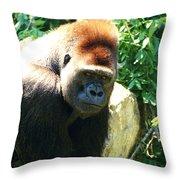Kc Gorilla-3 Throw Pillow