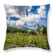 Kebler Pass Meadow Throw Pillow
