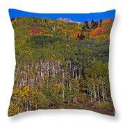 Kebler Pass Panorama Throw Pillow