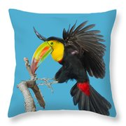 Keel-billed Toucan About To Land Throw Pillow