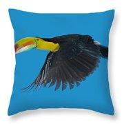 Keel-billed Toucan Throw Pillow