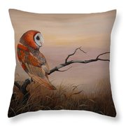 Keeper Of Dreams Throw Pillow