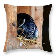 Keeper Of The Barn Throw Pillow