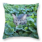 Keeping An Eye On You Throw Pillow