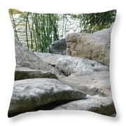 Keeping Their Distance Throw Pillow