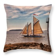 Keeping Vessels Safe Throw Pillow by Karol Livote