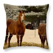 Keeping Warn Throw Pillow