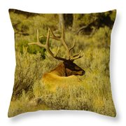 Keeping Watch Of His Herd Throw Pillow