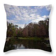 Kelly Park Springs Throw Pillow