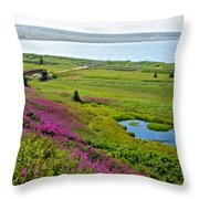 Kenai River Outlet On The Cook Inlet In Kenai-ak Throw Pillow