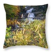 Kent Falls Throw Pillow by Bill Wakeley