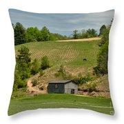 Kentucky Barn Quilt - Americana Star 2 Throw Pillow