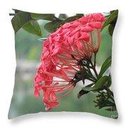 Kerala Beauty Throw Pillow