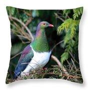 Kerehu - New Zealand Wood Pigeon Throw Pillow