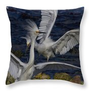 Kerfuffle Throw Pillow