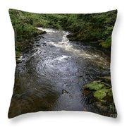 Ketchikan River Throw Pillow