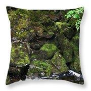 Ketchikan Riverbank Throw Pillow