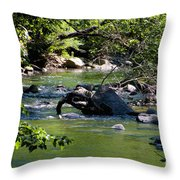 Keuka Seneca Outlet Trail Throw Pillow