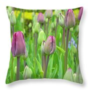 Keukenhof Gardens 12 Throw Pillow