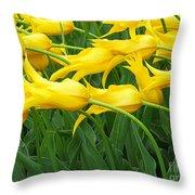 Keukenhof Gardens 13 Throw Pillow