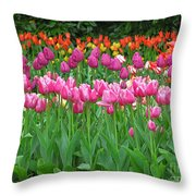 Keukenhof Gardens 14 Throw Pillow