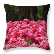 Keukenhof Gardens 16 Throw Pillow