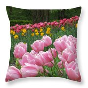 Keukenhof Gardens 17 Throw Pillow