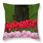 Keukenhof Gardens 18 Throw Pillow