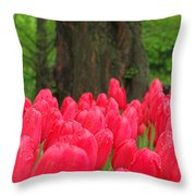 Keukenhof Gardens 19 Throw Pillow