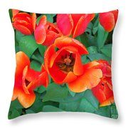 Keukenhof Gardens 2 Throw Pillow