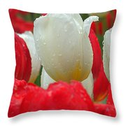 Keukenhof Gardens 21 Throw Pillow