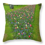 Keukenhof Gardens 26 Throw Pillow