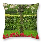 Keukenhof Gardens 34 Throw Pillow